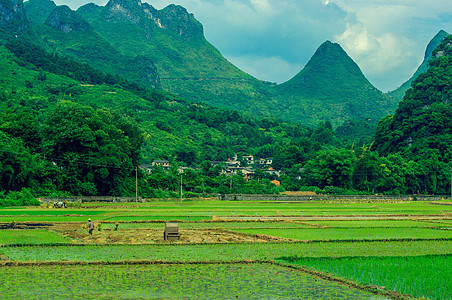 美丽山间农田图片