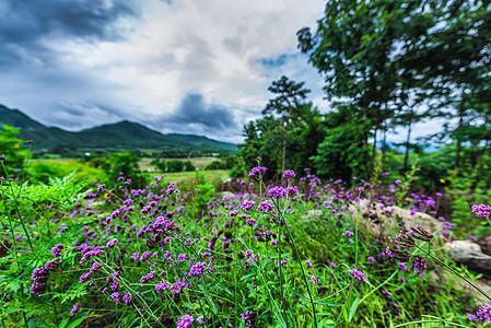 泰国拜县美丽风光图片