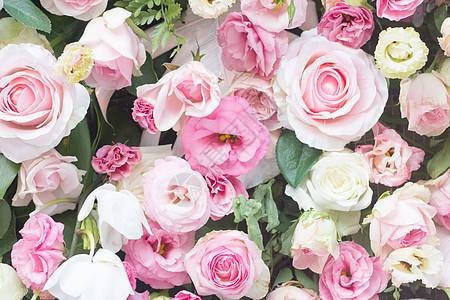 玫瑰花墙图片