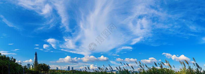 飞鸟形状的云层素材图片