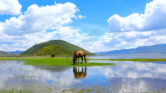 泸沽湖蓝天白云山水倒影美景图片