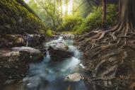 静谧小溪图片