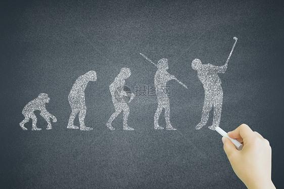黑板上的人类进化史图片
