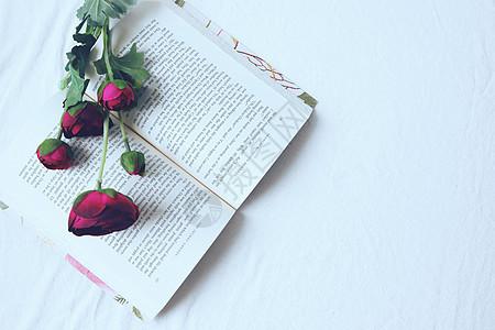 芍药花与翻开的书图片