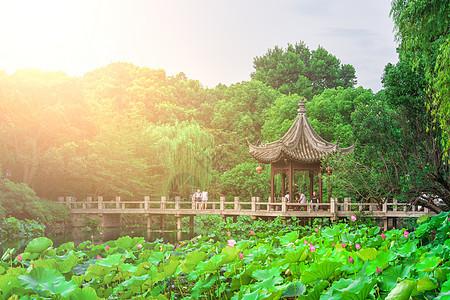 上海古漪园图片