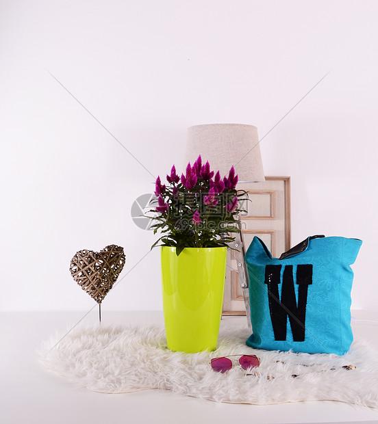 家居生活的盆栽图片