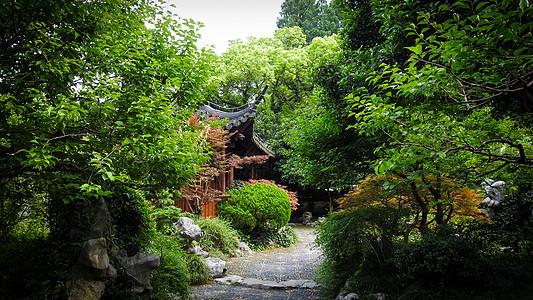 绿意盎然的中国园林图片
