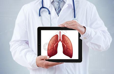 医生拿着人体器官肺和平板图片