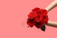 手拿玫瑰花图片