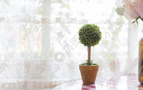 小花盆图片