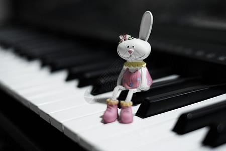 钢琴上的小兔子图片