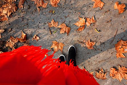 行走在满地枫叶的小路上图片