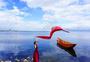 云南苍山洱海玩耍的少女图片