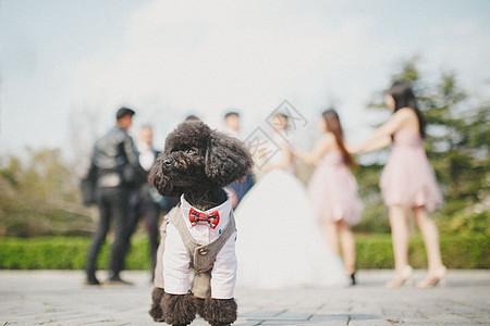 结婚现场图片