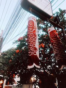 泰国清迈宁曼路店铺的特色装饰图片