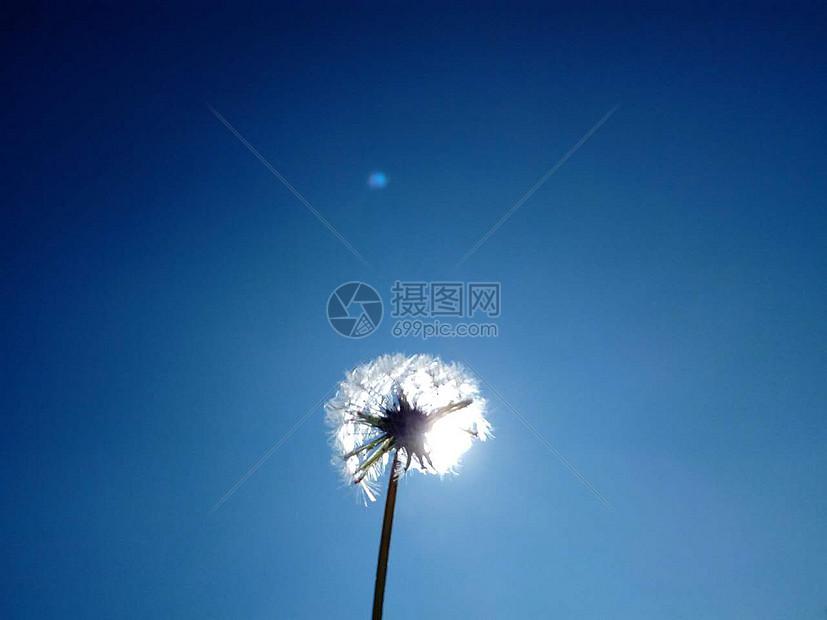 唯美图片 自然风景 像大海的天空jpg  分享: qq好友 微信朋友圈 qq