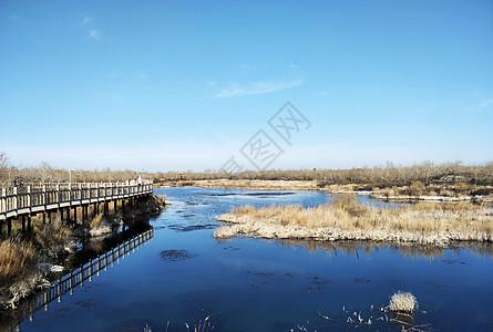 五大连池温泊湖图片