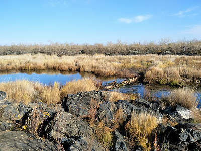 五大连池火山石图片