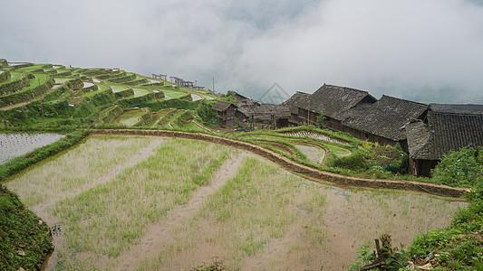贵州加傍梯田图片