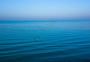 湛蓝的海图片