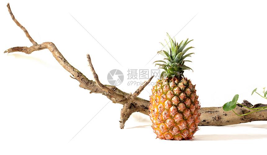 菠萝海南菠萝图片