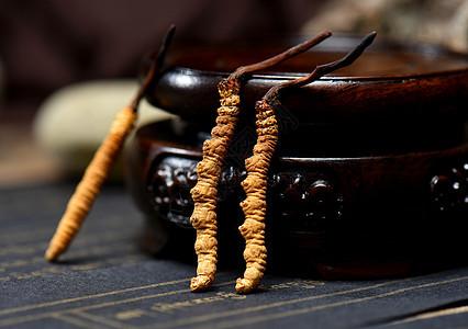 西藏野生虫草冬虫夏草图片