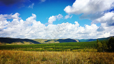 河北塞罕坝国家森林公园图片