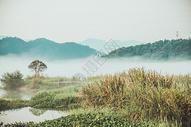 群山的晨雾图片