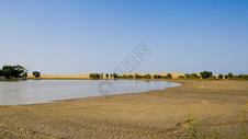 新疆胡杨林风光500663995图片