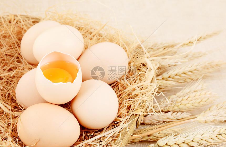 四川农家土鸡蛋图片