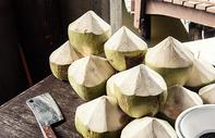泰国椰子图片
