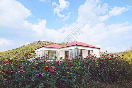 鲜花房屋图片