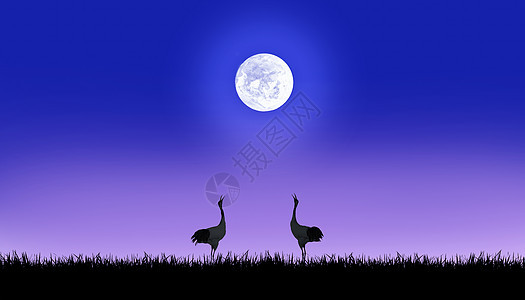 月光下的仙鹤图片