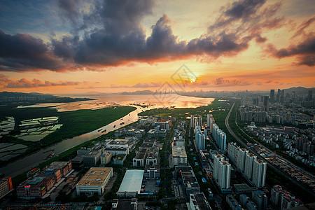 深圳湾之巅图片