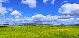 广阔草原图片