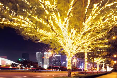 路边被灯串装扮的树城市夜景图片