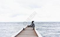 贝加尔湖畔的姑娘图片