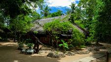 椰林木屋图片