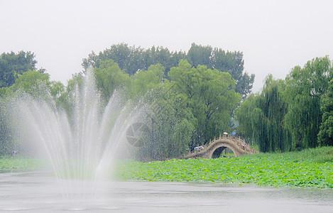 北京圆明园湖面景色图片