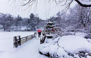 冬天浪漫的雪景图片