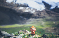 西藏美景中的小沙弥图片