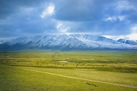 雪山草原图片