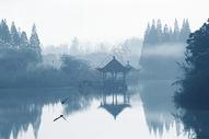 水乡之晨图片