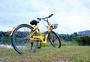 骑小黄车环形绿道自由出行图片