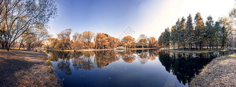 上海共青森林公园秋色全景图图片