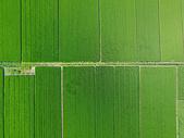 空中鸟瞰田园500677155图片