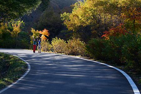 走在秋天小路上的两个美女图片