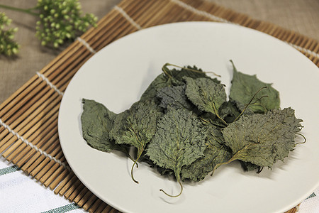 蔬菜之紫苏图片