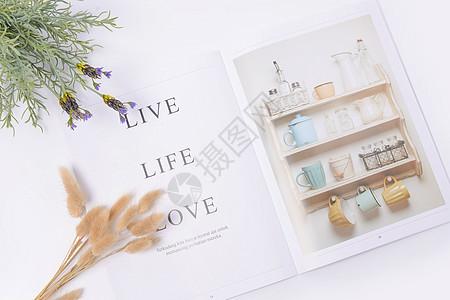 桌面上的植物和杂志图片