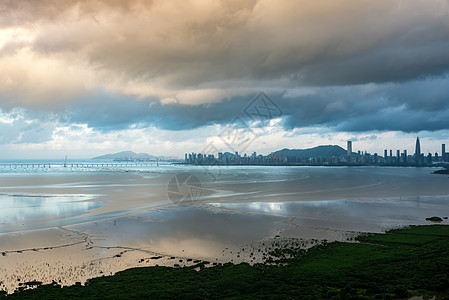 深圳湾城市风光图片